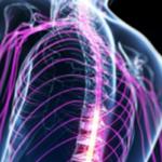 Metodo Tamburo: Dolori Neuromuscolari, cosa sono e le possibili soluzioni e trattamenti